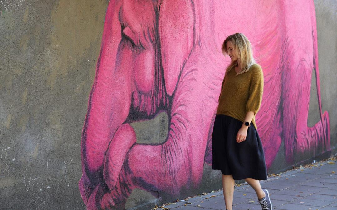 Pasivaikščiojimas su rausvu drambliu